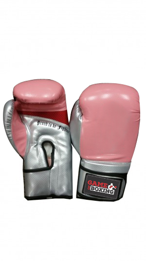 Boxing gloves 2 Tone pink silver – Game of Boxing